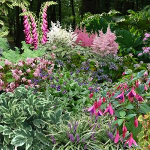 Votre jardin thématique